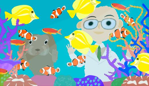 「熱帯魚を飼育しやすい部屋」企画会議の報告《ワクワク賃貸研究所》
